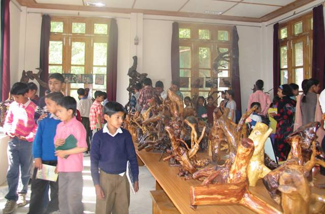 'Driftwood Beauty' - Exhibition of drift wood objects by Durga Prasad Rao, Bandrol, Kullu distt., H.P.
