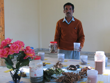 Exhibition of medicinal plants cultivated at the Trust. Gardener Gokul.